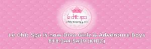 diva-idea-banner